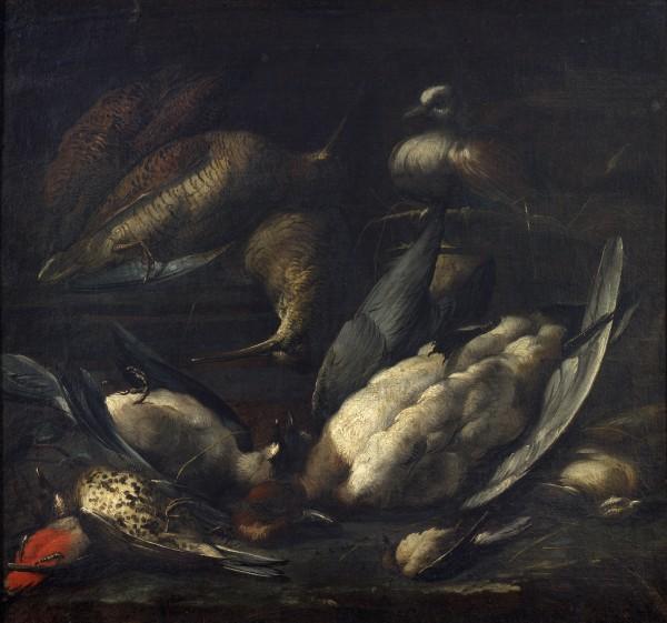 Cacciagione con piccione vivo