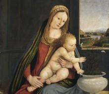 Madonna dei garofani