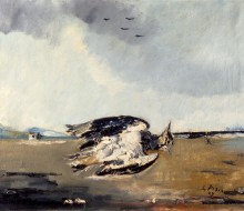 Marine Still Life with a Lapwing