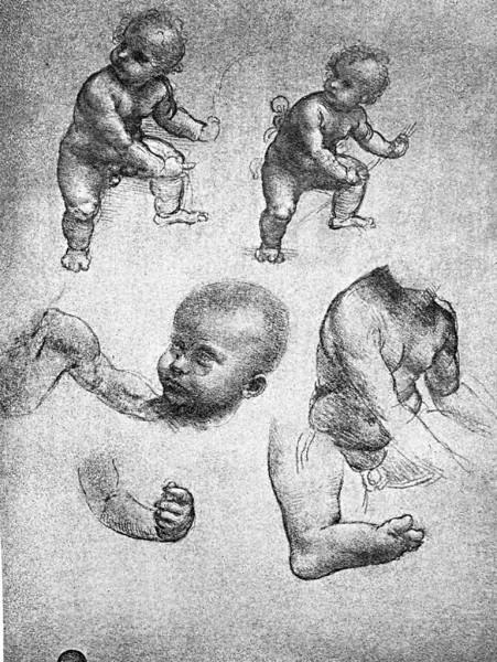 Cesare da Sesto, Studi di bimbi