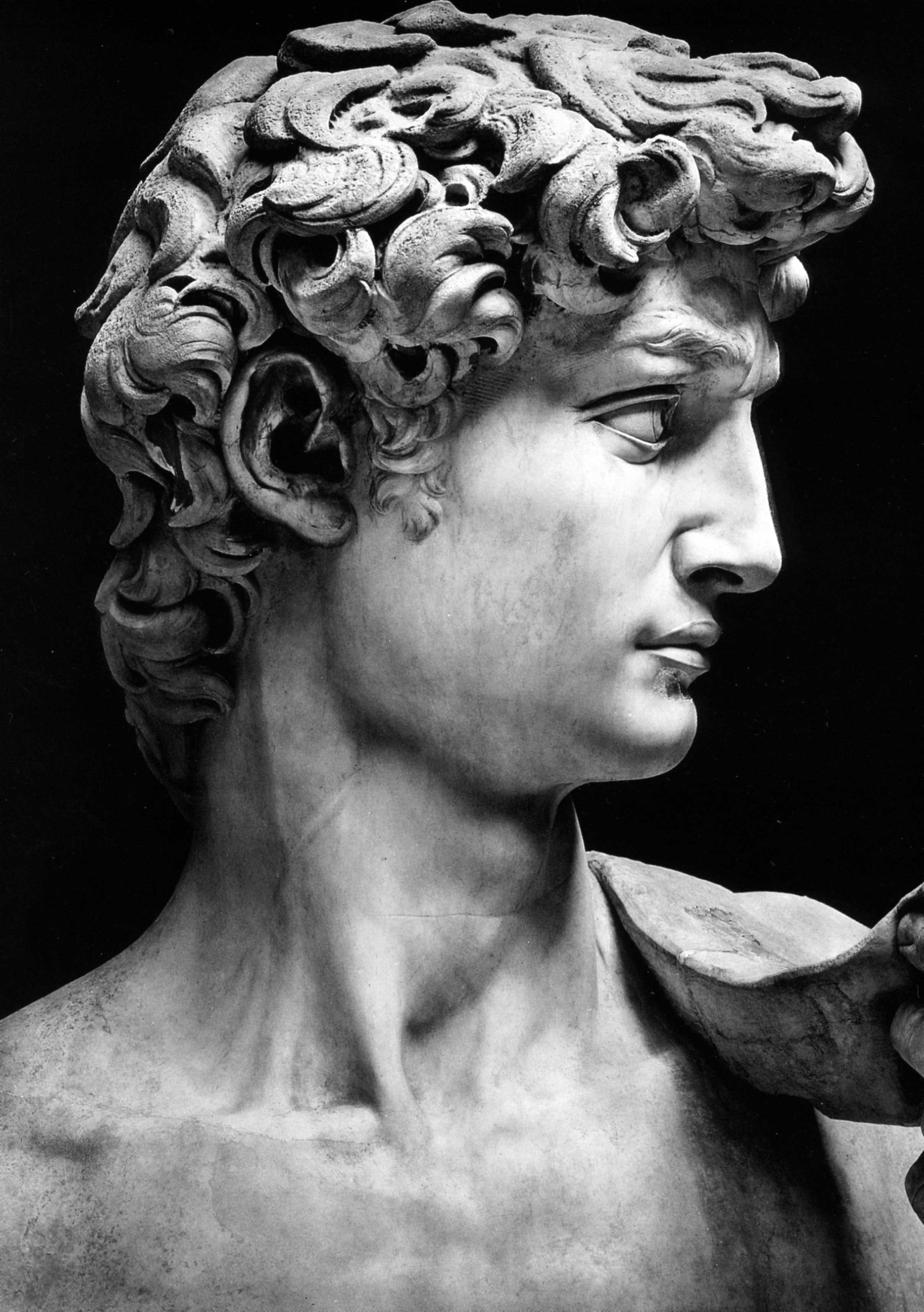 Michelangelo images - Download Hi Res Image Title Michelangelo David Author Michelangelo David Date Dopo Il 1873 Work Not On Display