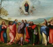 Assunzione della Vergine