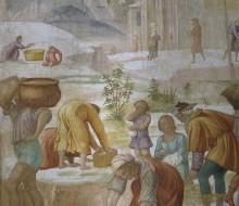 La raccolta della manna