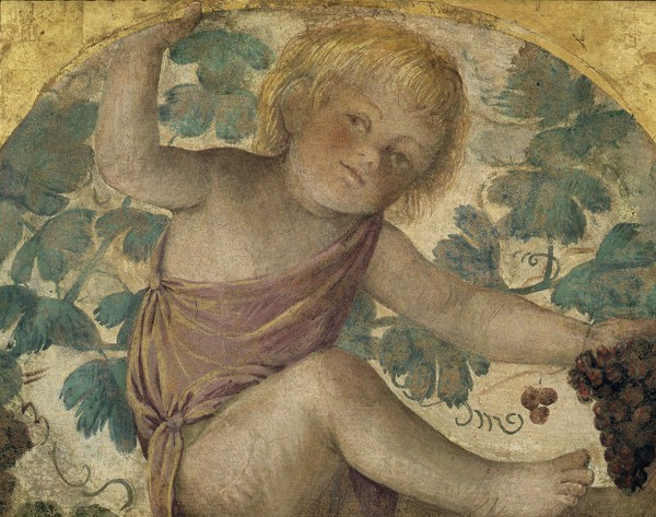 Putti Harvesting Grapes – Putto under a Vine Trellis