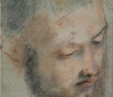 Studio di testa maschile di tre-quarti volta a destra (Cristo)