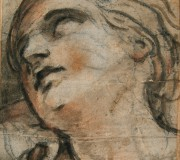 Testa femminile reclinata