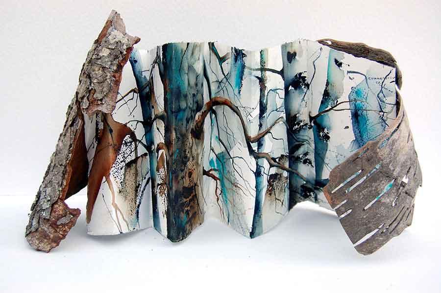 Nadia Tognazzo ( Dialoghi tra un pino e una betulla ) Installazione con cortecce d'albero e foglio aquarellato
