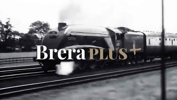 BreraPlus+<br>Un nuovo modo di vivere il museo online